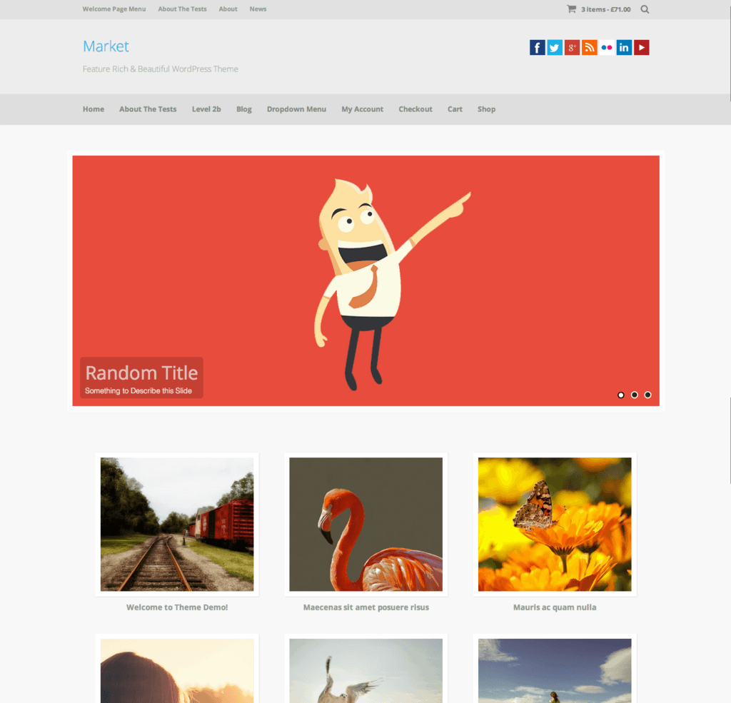 Market   Feature Rich   Beautiful WordPress Theme