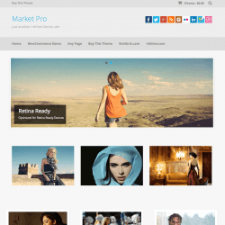 Market Pro   Just another InkHive Demos site