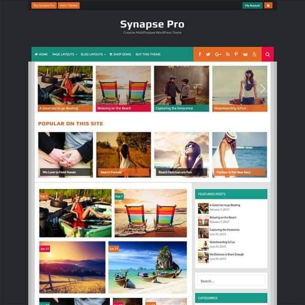 synapse pro screenshot