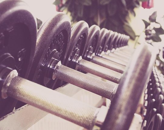 Why Fitness Niche will Rise in 2019?
